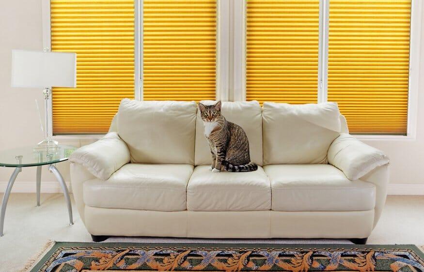 Wabenplissee Heimtiere - effektiver Hitzeschutz fur die warme Jahreszeit